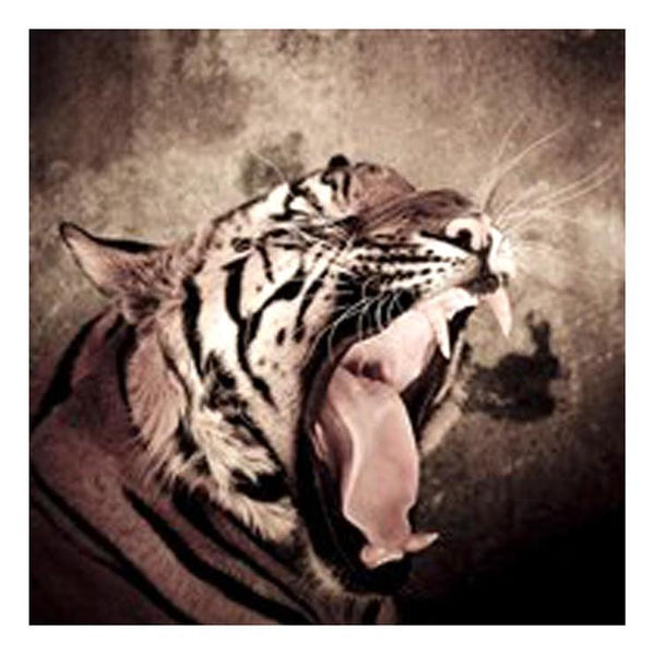 Cheap 2019 New Tiger 5d Diy Cross Stitch Diamond Painting Kits QB5075