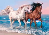 5D DIY Diamond Painting Kits Beach Horse VM92310