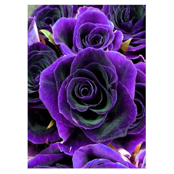 Cheap Pretty Blue Rose Diamond Painting Kits AF9352