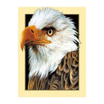 5d Diy Diamond Painting Kits Eagle Af9746
