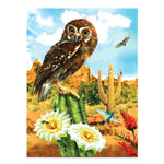 Cheap Lovely Owl Stand on The Cactus Diamond Painting Kits AF9257