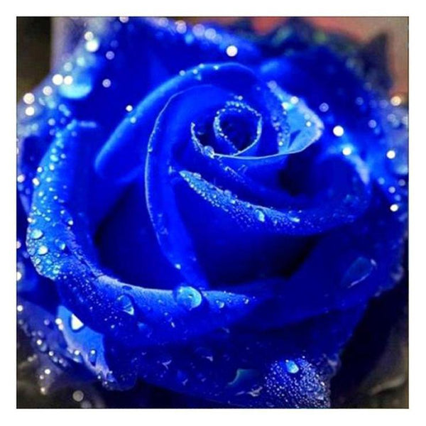 Dream Series Hot Sale Blue Rose Diamond Painting Kits AF9315