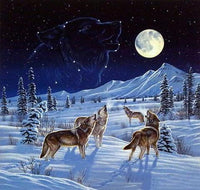 2019 5D DIY Diamond Painting Kits Winter Wolfs VM92399