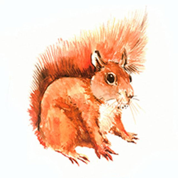 5D Diy Cross Stitch Diamond Painting Kits Squirrel NA0258