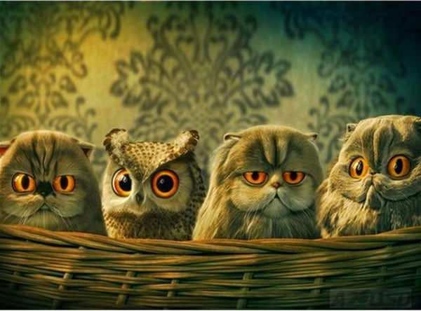 5D DIY Diamond Painting Embroidery Cross Stitch Kits Animal Owl VM92296