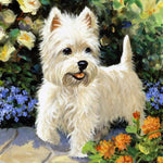 2019 5d Diy Diamond Painting Kits Oil Painting Style Dog VM6002