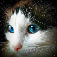 2019 5d DIY Diamond Painting Cute Cat  VM01306 (1766949257306)