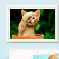 Hot Sale Cut Cats Portrait Diy 5d Rhinestone Art Kits VM97485