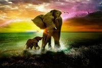 5d Diy Diamond Painting Kits Elephant VM9066