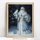 2019 5D DIY Diamond Painting Kit Santa Claus Winter VM8729