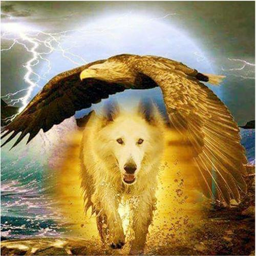 2019 5D DIY Diamond Painting Kits Wolf Eagle VM1959