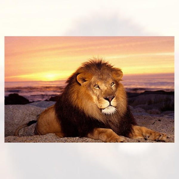 New Arrival Hot Sale Fierce Lion Portrait 5d Diy Diamond Painting Kits VM7786