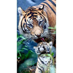 2019 5d Diy Diamond Painting Tige Kits Popular Tiger VM3547 (1766998016090)