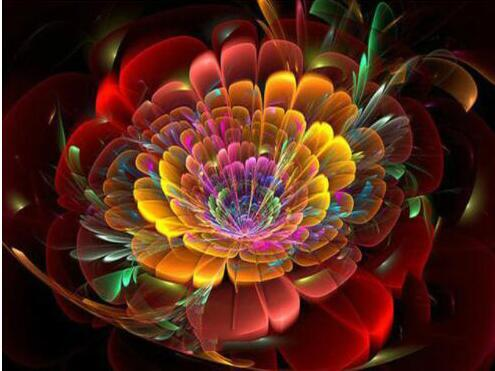 5D DIY Diamond Painting Art Kits Colors Abstract Flower VM90811