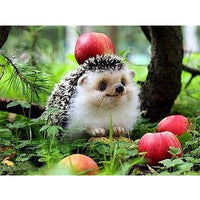 2019 5d Diy Diamond Painting Kits Hedgehog Pattern VM9069