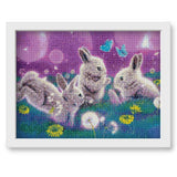 Dream Rabbit 5D Diy Embroidery Cross Stitch Diamond Painting Kits NA00261