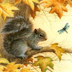 5d Diy Diamond Painting Kits Squirrel NA0446