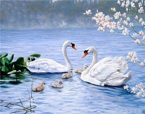 2019 5d DIY Diamond Painting Swan Family VM1512 (1766957023322)