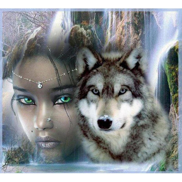 5d Diy Diamond Painting Kits Beauty And Animal Wolf Dream VM8113