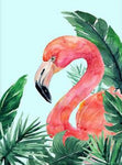 5d Diy  Diamond Painting Kits Watercolor Flamingo NA00381