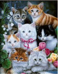 2019 5d Diy Diamond Painting Kits Cute Cats VM7455