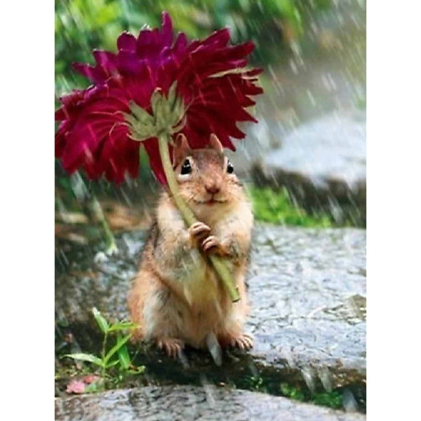 Funny Full Drill Squirrel 5d Diy Embroidery Cross Stitch Diamond Painting Kits NA0452