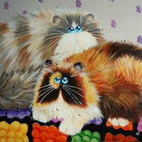 2019 5D DIY Diamond Painting Kits Funny Cat VM7418