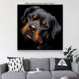 2019 5d Diy Diamond Painting Kits Special Dog  Pictures  VM9853