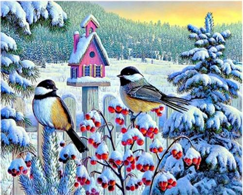 2019 5d Diy Diamond Painting Kits Winter Snow Bird VM8565