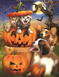 2019 5d Diy Rhinestone Stitch Kits Halloween Cat Dog Pumpkin  VM4083