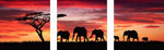 Home Decorate Large Size Elephant Home Decor 5d Diy Diamond Painting Kits VM9632