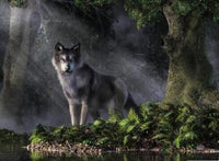 2019 5D DIY Diamond Painting Kits Grey Wolf Nature VM7515