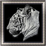 Cheap Black White Tiger Pattern 5d Diy Diamond Painting Kits VM9655