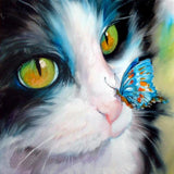2019 5d Diy Crystal Painting Kits Oil Painting Style Cat VM7321