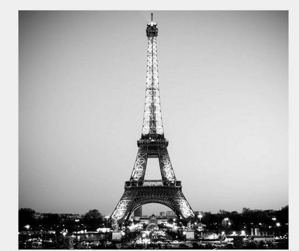 5d Diy Diamond Painting Kits Black White Eiffel Tower  VM9405
