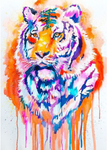 5d Pictures Tiger Modern Art Dream Diy Diamond Painting Cross Stitch VM9045