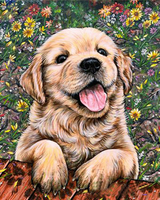 2019 5d Diamond Painting Kits Oil Painting Style Dog VM8705