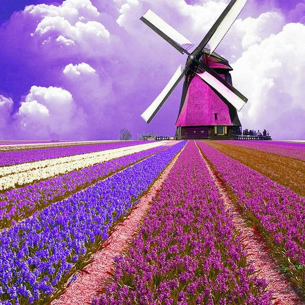 2019 5d Diy Diamond Painting Kits Landscape Lavender VM8139