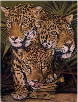 2019 5d Diy Diamond Painting Kits Animal Leopard  VM29522