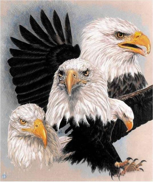 2019 5d Diy Diamond Painting Kits Animal Eagle VM09521