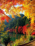 2019 5d DIY Diamond Painting Kits Autumn Mountain Lake VM95027