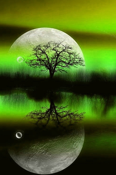 2019 5D DIY Diamond Painting Kits Dream Green Tree VM39024