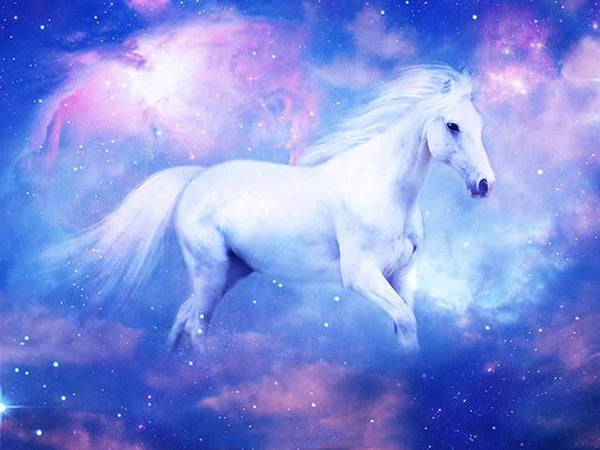 2019 5d Diy Diamond Painting Kits White Horse VM9109