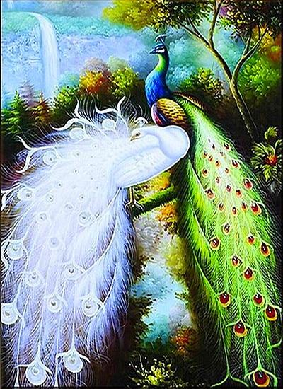2019 5d DIY Diamond Painting Kits Animal Peacock VM8167