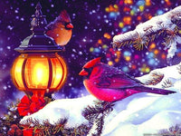 2019 5d Diy Diamond Painting Kits Winter Animal Bird VM9201