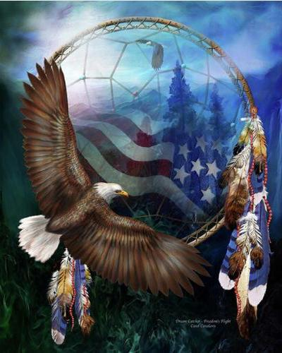 Eagle Animal 2019 Dream Catcher Wall Decor 5d Diy Diamond Painting Kits VM9129