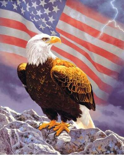 2019 5d Diy Diamond Painting Kits Eagle American Flag VM9125