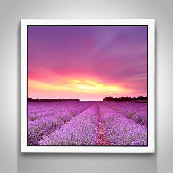 Cheap Lavender Fields Nature 5D Diy Cross Stitch Diamond Painting Kits NA0046