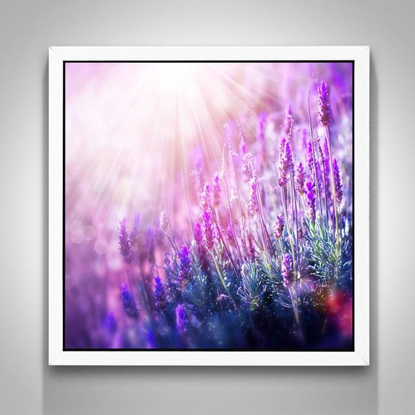 New Lavender Fields Nature 5D Diy Embroidery Cross Stitch Diamond Painting Kits NA0044