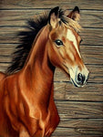 2019 5d Diy Diamond Painting Kits Embroidery Horse VM37521